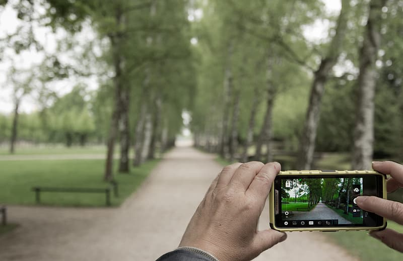 Mistakes That Kill Your Smartphone Photos focus